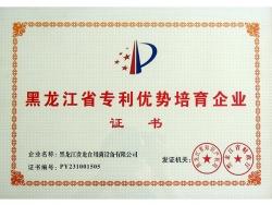 Heilongjiang Province patent superiority cultivation enterprise