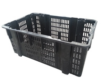 Edible fungus black fungus basket